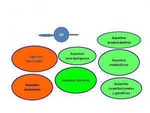 OA Aspectos funcionales Aspectos propioceptivos Aspectos neuropsquicos Aspectos