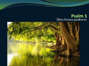 Psalm 1 Zota brama psaterza PSALM 1 Dwie