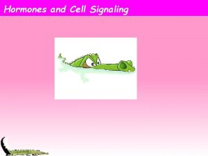 Hormones and Cell Signaling Cellular Communication Everything an