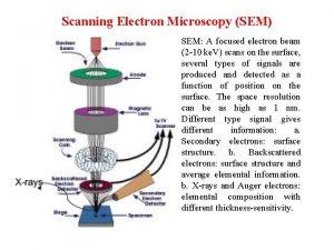 Scanning Electron Microscopy SEM SEM A focused electron