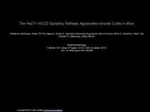 The Pep T 1NOD 2 Signaling Pathway Aggravates