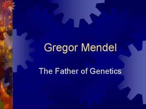 Gregor Mendel The Father of Genetics 1 Who