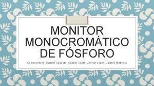 MONITOR MONOCROMTICO DE FSFORO Componentes Gabriel Augusto Gabriel