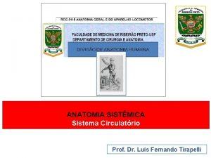 ANATOMIA SISTMICA Sistema Circulatrio Prof Dr Lus Fernando