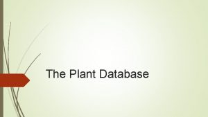 The Plant Database Primary Goals Store and Retrieve