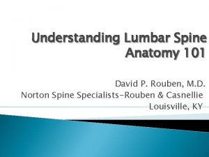 Understanding Lumbar Spine Anatomy 101 David P Rouben