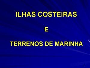 ILHAS COSTEIRAS E TERRENOS DE MARINHA 1 BENS