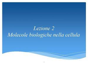 Lezione 2 Molecole biologiche nella cellula 1 Le
