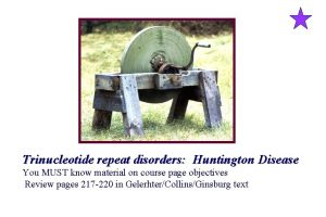Trinucleotide repeat disorders Huntington Disease You MUST know