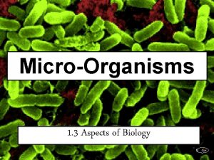 MicroOrganisms 1 3 Aspects of Biology SJ Gaze