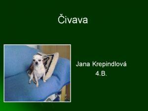 ivava Jana Krepindlov 4 B Odkazy l l