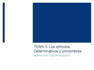 TEMA 3 Los artculos Determinativos y pronombres MORFOLOGA