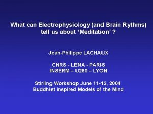 What can Electrophysiology and Brain Rythms tell us