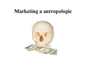 Marketing a antropologie Co je co Antropologie je