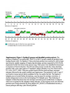 Genome map Supplementary Figure 1 Epsilon 15 genome