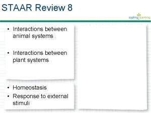 STAAR Review 8 Interactions between animal systems Interactions