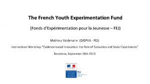 The French Youth Experimentation Fund Fonds dExprimentation pour