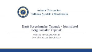 Ankara niversitesi Nallhan Meslek Yksekokulu Basit Sorgulamalar Yapmak