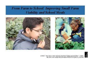 From Farm to School Improving Small Farm Viability