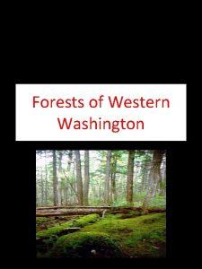 Forests of Western Washington Washingtons Climate Washingtons Biomes