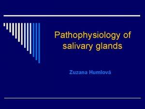 Pathophysiology of salivary glands Zuzana Humlov Salivary glands