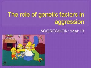 The role of genetic factors in aggression AGGRESSION