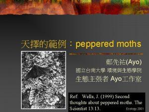 peppered moths Ayo Ayo Ref Wells J 1999