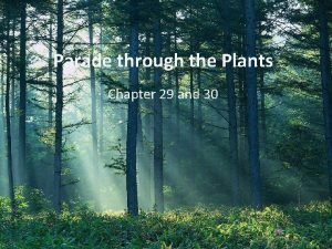 Parade through the Plants Chapter 29 and 30