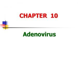 CHAPTER 10 Adenovirus Definitions of the virus n