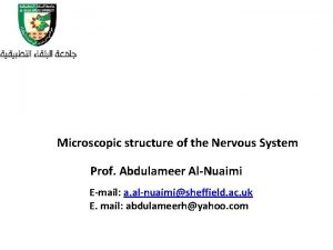Microscopic structure of the Nervous System Prof Abdulameer