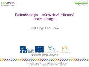 Biotechnologie prmyslov mikrobn biotechnologie Josef Trgl Petr Hork
