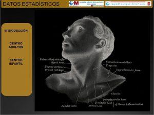 DATOS ESTADSTICOS INTRODUCCIN CENTRO ADULTOS CENTRO INFANTIL DATOS