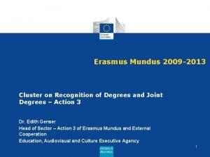 Erasmus Mundus 2009 2013 Cluster on Recognition of