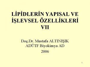 LPDLERN YAPISAL VE LEVSEL ZELLKLER VII Do Dr