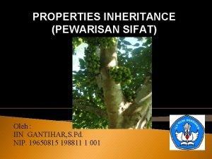 PROPERTIES INHERITANCE PEWARISAN SIFAT Oleh IIN GANTIHAR S