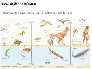 EVOLUO BIOLGICA Ideia bsica da Biologia Evolutiva espcies
