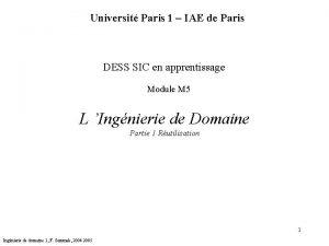 Universit Paris 1 IAE de Paris DESS SIC