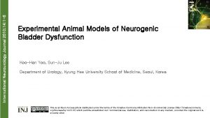 International Neurourology Journal 2010 14 1 6 Experimental