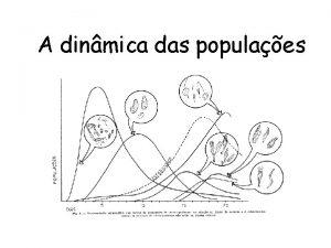 A dinmica das populaes Conceitos bsicos Populao Conjunto
