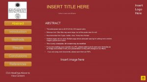 INSERT TITLE HERE Authors name and affiliation Abstract
