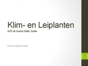 Klim en Leiplanten AOC de Groene Welle Zwolle