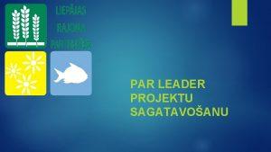 PAR LEADER PROJEKTU SAGATAVOANU Ko paredz LEADER Biedrba