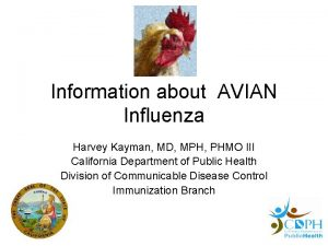 Information about AVIAN Influenza Harvey Kayman MD MPH