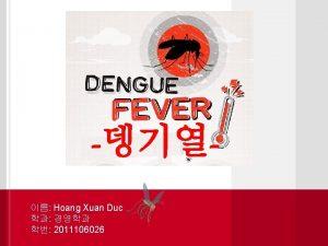 Dengue f ever What is Dengue Fever Dengue
