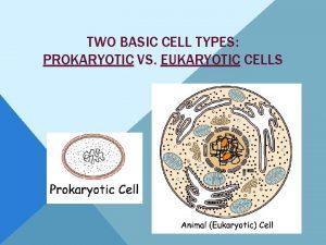 TWO BASIC CELL TYPES PROKARYOTIC VS EUKARYOTIC CELLS