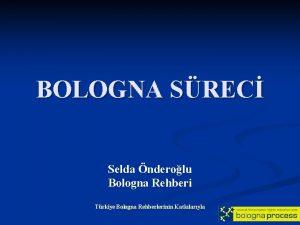 BOLOGNA SREC Selda nderolu Bologna Rehberi Trkiye Bologna