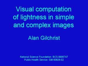 Visual computation of lightness in simple and complex