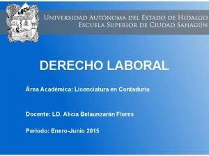 DERECHO LABORAL rea Acadmica Licenciatura en Contadura Docente