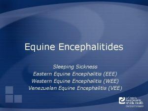 Equine Encephalitides Sleeping Sickness Eastern Equine Encephalitis EEE