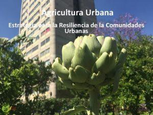 Agricultura Urbana Estrategia para la Resiliencia de la